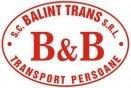 Balint Trans SRL
